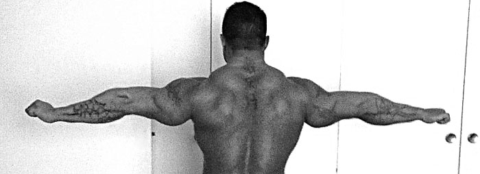 back and triceps